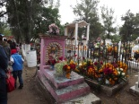 Cemetery Adorned with Flowers