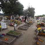 Cemetery Adorned with Flowers (2)