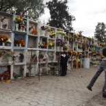 Cemetery Adorned with Flowers (3)