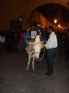 Donkey in El Jardin