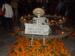 Ofrendas for Day of Dead by Suzanne Hosang